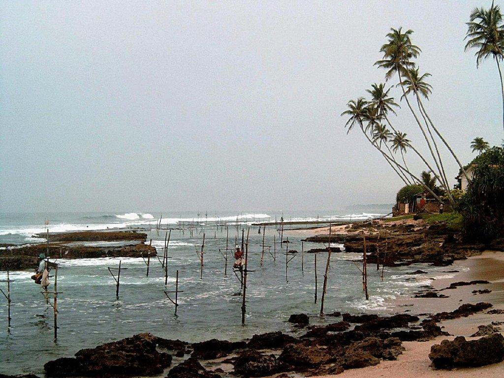 Stelzenfischer Auf Sri Lanka Bernd Niendorf Fotostartbilderde
